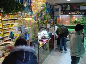 Najmniejszy sklep zoologiczny